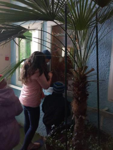 Екскурсія в міський еколого-натуралістичний центр